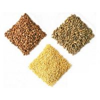 Ukrainian Dried Beans, Grains and Rice
